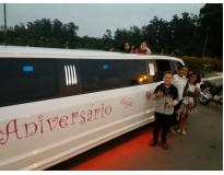serviços de festa infantil na limousine em Santa Teresinha